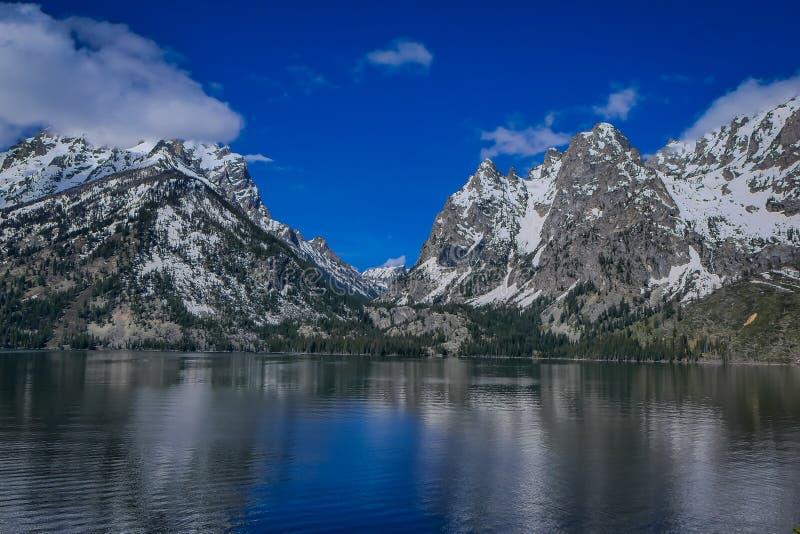 Härlig landskapsikt av det korkade berget för snö, storslagna Tetons som reflekterar på vatten royaltyfria bilder