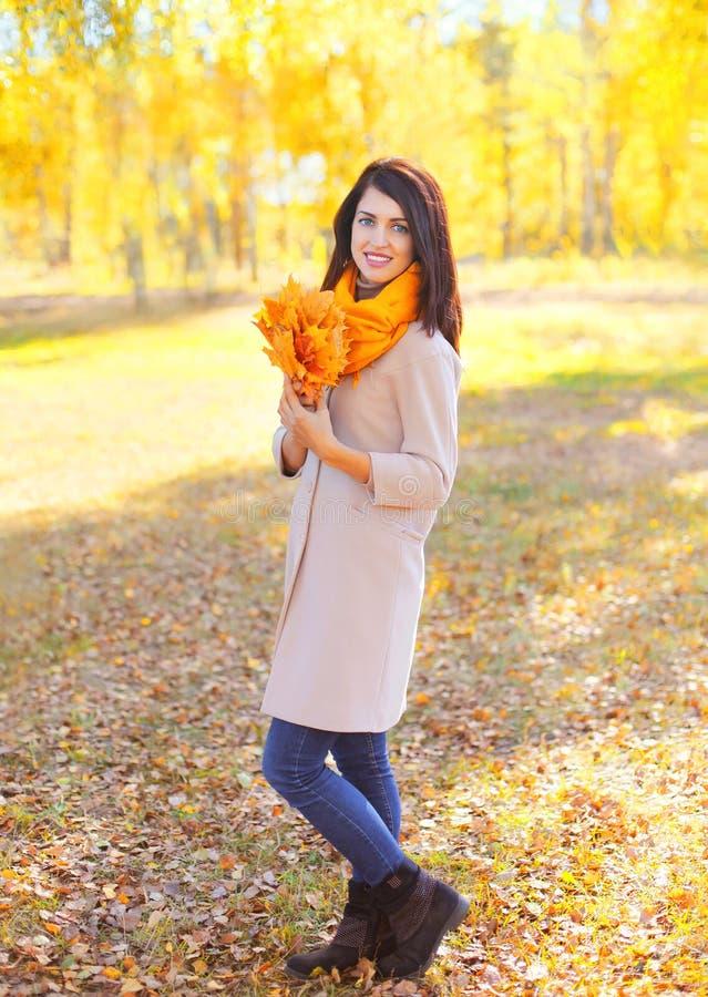 Härlig le ung kvinna med gula lönnblad i solig höst royaltyfria bilder