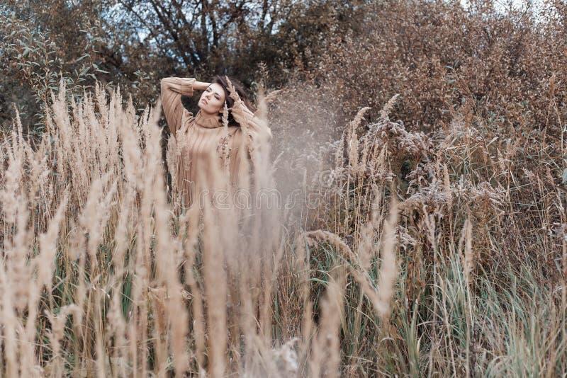 Härlig ledsen gullig attraktiv kvinna i en beige tröja som är bred i ett fält av torrt gräs i kall mulen dag för höst, foto av be arkivbild