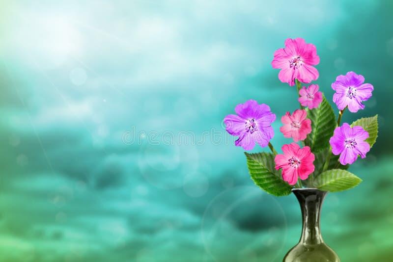 Härlig levande petuniabukettbukett i keramisk vas med tomt på vänstersida på kulör himmel med molnbakgrund royaltyfri bild