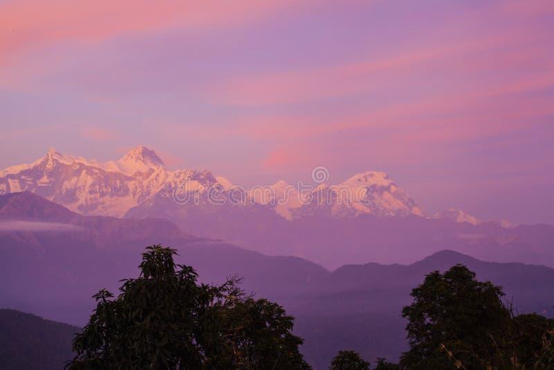 Härlig liggande i Himalayas royaltyfri bild
