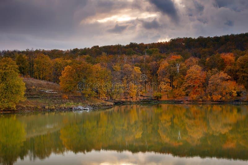 härlig liggandenatur Höstnedgångskog reflekterad på sjön royaltyfri foto