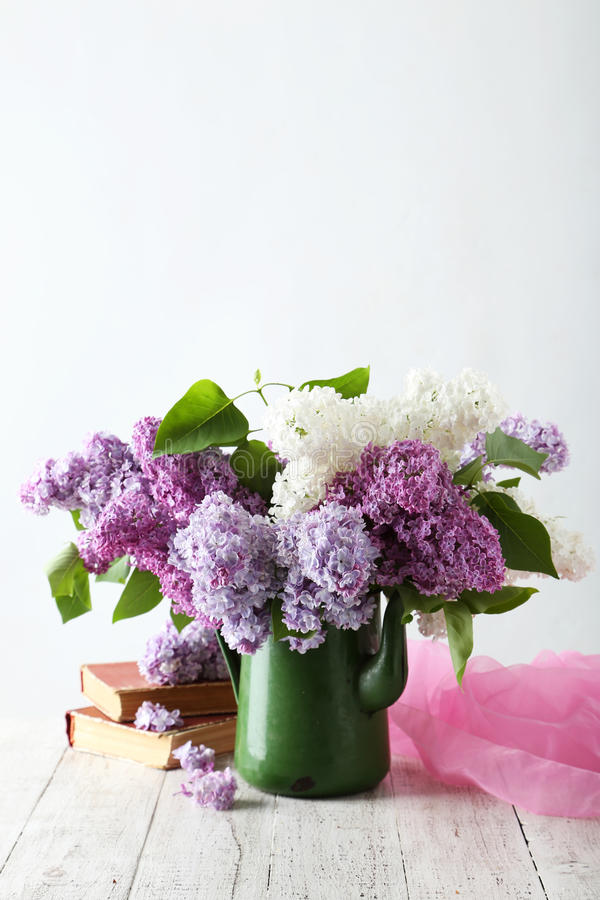Härlig lila i kanna arkivfoton