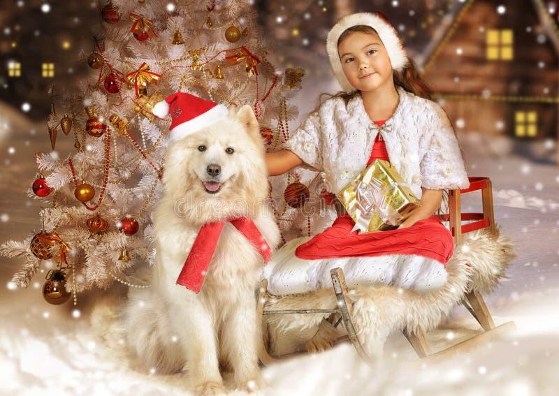 Härlig liten flicka med hunden på jul royaltyfri fotografi