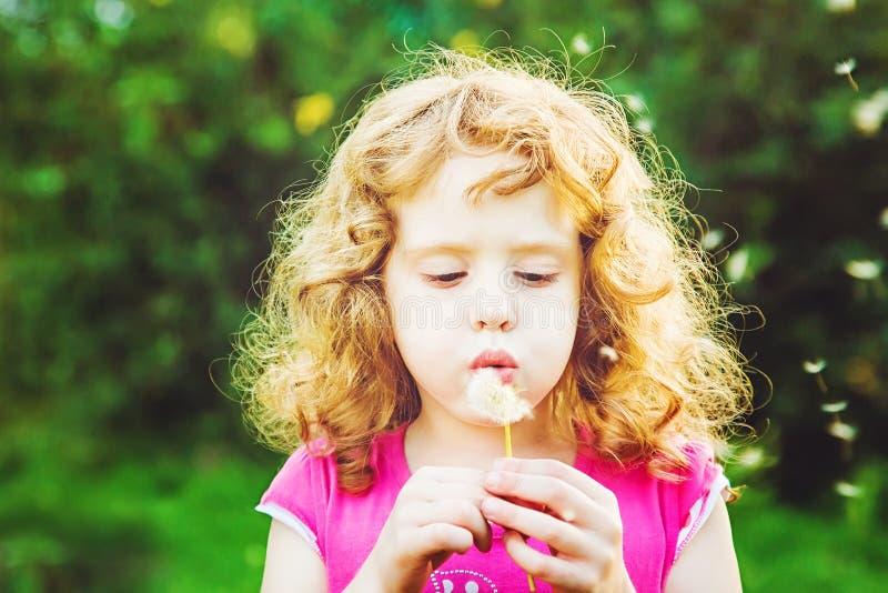 Härlig liten lockig flicka som blåser maskrosen, horisontalskott royaltyfri bild