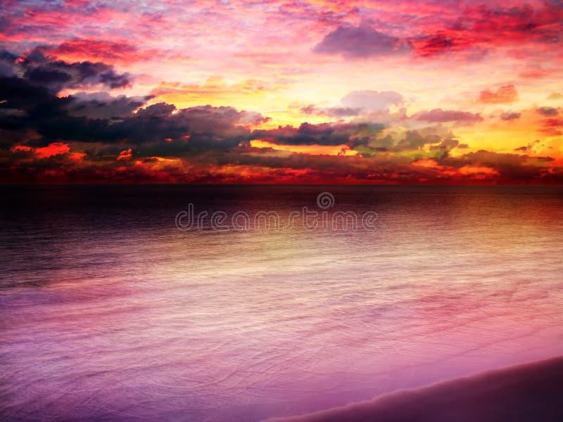 härlig ljus solnedgång royaltyfri bild