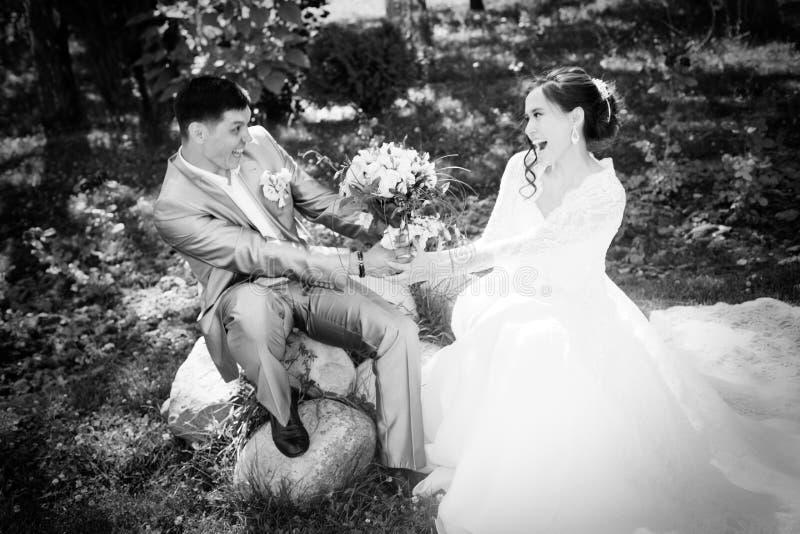 Härlig lycklig brud och brudgum royaltyfri fotografi