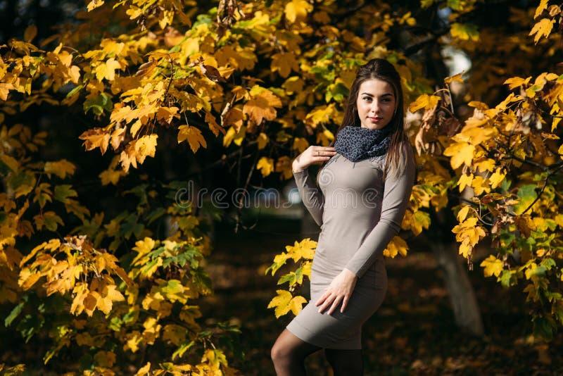 Härlig lycklig le flicka som bär långt klänning- och hösthalsdukanseende i skogen som omges av gula träd royaltyfri bild