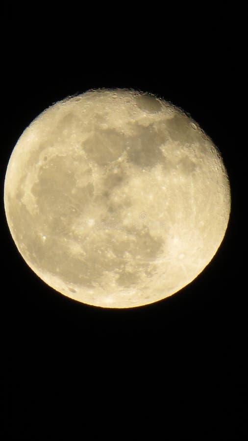 Härlig måne, på en underbar afton i Chisinau och underbar atmosfere royaltyfria bilder