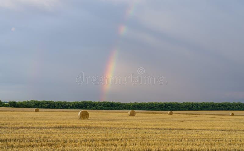 Härlig mångfärgad regnbåge över ett slutta vetefält med stora rullar av sugrör royaltyfri foto