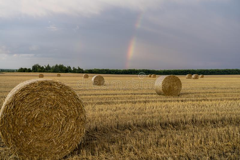 Härlig mångfärgad regnbåge över ett slutta vetefält med stora rullar av sugrör royaltyfria foton