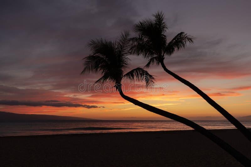 Härlig Maui tropisk solnedgång arkivbild
