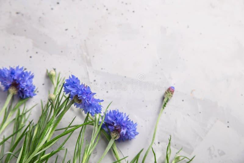 Härlig minimalistic grå bakgrund med blåa blommor fotografering för bildbyråer
