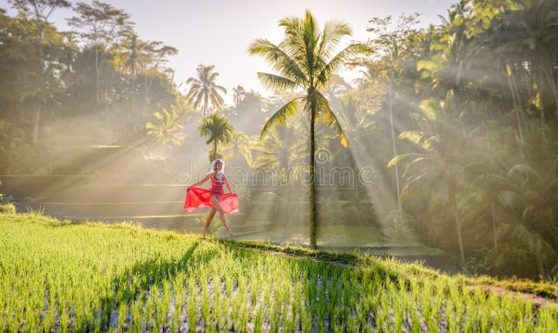 Härlig modell i röd klänning på Tegalalang risterrass 8 royaltyfria foton