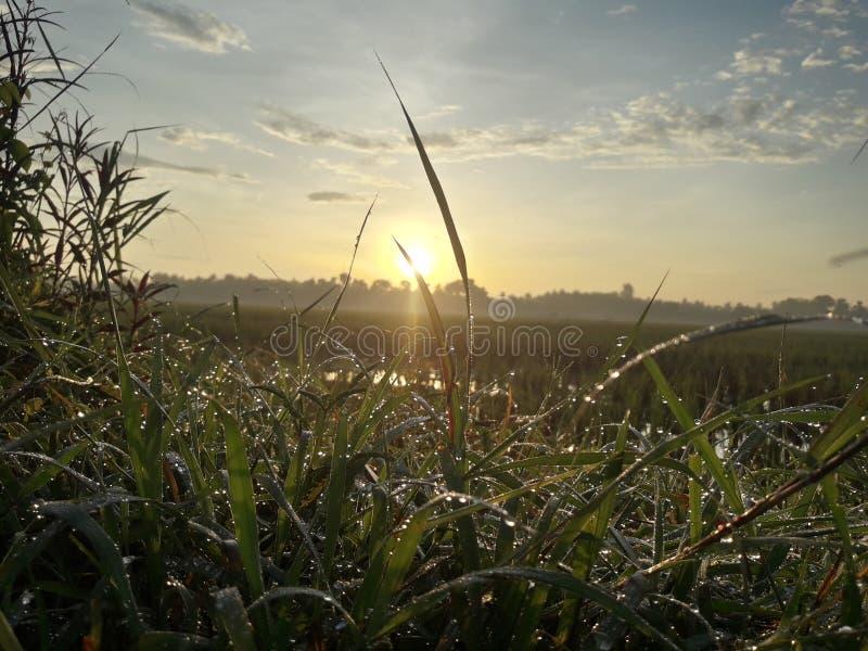 Härlig morgonsikt och fantastisk soluppgång av i dag arkivbild
