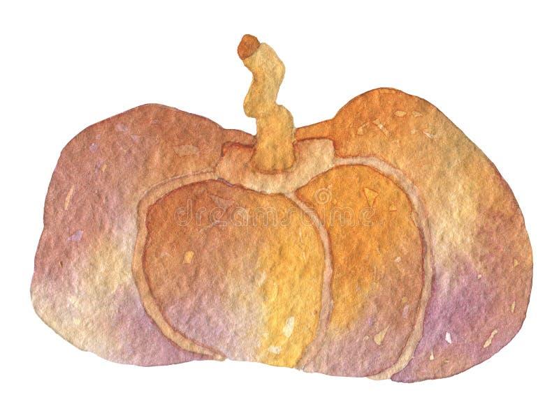 Härlig morotsfärgad pumpa Lyckligt allhelgonaaftonparti Beståndsdelar för konst för gem för handteckning vattenfärg isolerade gra royaltyfri illustrationer