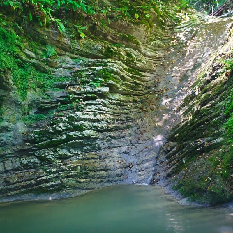 Härlig mystisk sjö och liten vik som flödar in i den bland de sydliga djungelskogarna royaltyfri bild