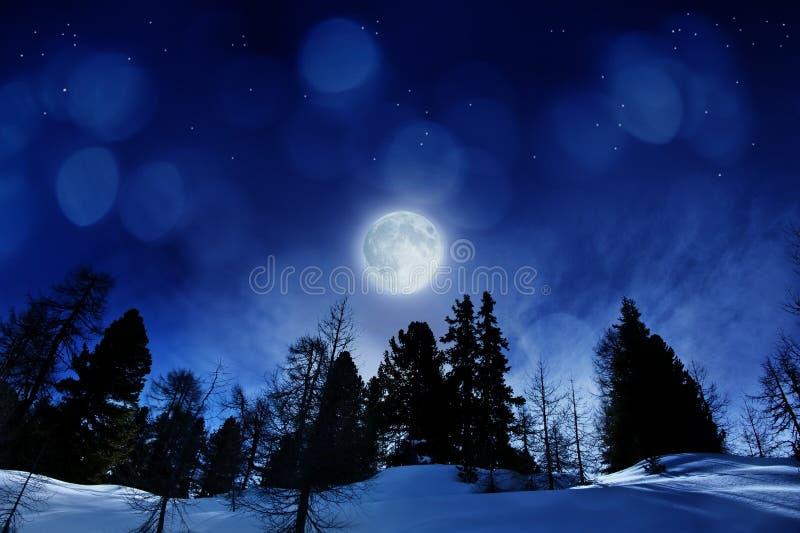 härlig nattvinter arkivbild