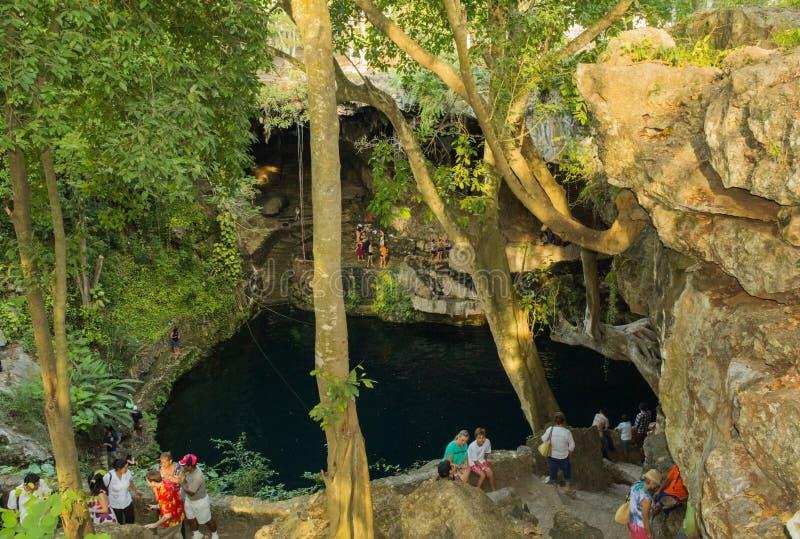 Härlig natur Cenote Zaci i Mexico fotografering för bildbyråer