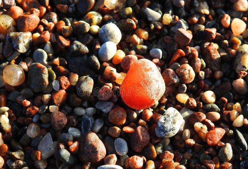 Härlig naturlig bärnsten på små stenar nära havet, Litauen royaltyfri foto