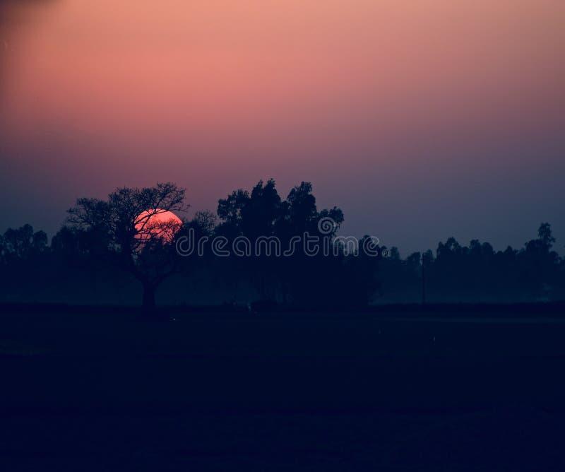 Härlig naturlig solnedgång med trädmaterielfotografiet arkivfoto