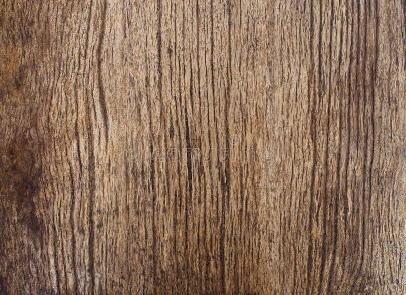 Härlig naturlig textur av wood plankabruk för skäll som naturwoode royaltyfria bilder