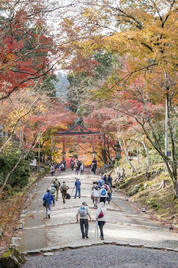 Härlig nedgångfärg av Hiyoshi Taisha royaltyfria foton
