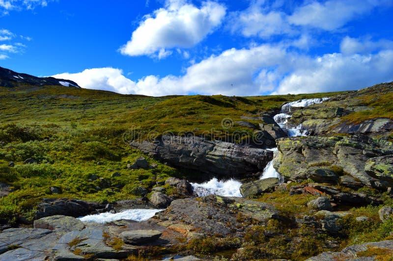 Härlig Norge natur i nationalpark royaltyfria bilder