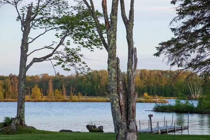 Härlig Northwoods plats på shoreline av Chippewa Flowage med pir som sticker ut in i vatten och ursnygga träd i Hayward royaltyfri foto