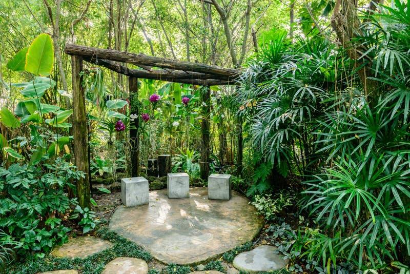 Härlig orkidé från trädgård fotografering för bildbyråer