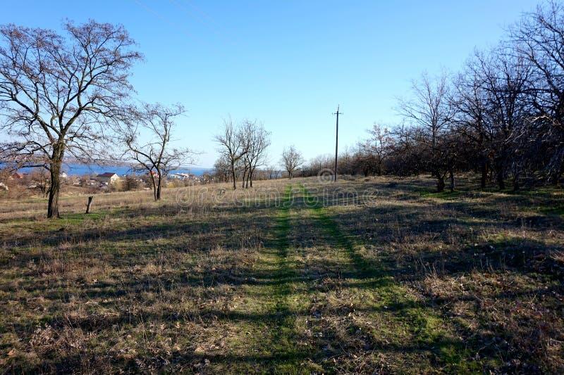 Härlig panorama av en grusväg på våren arkivbild