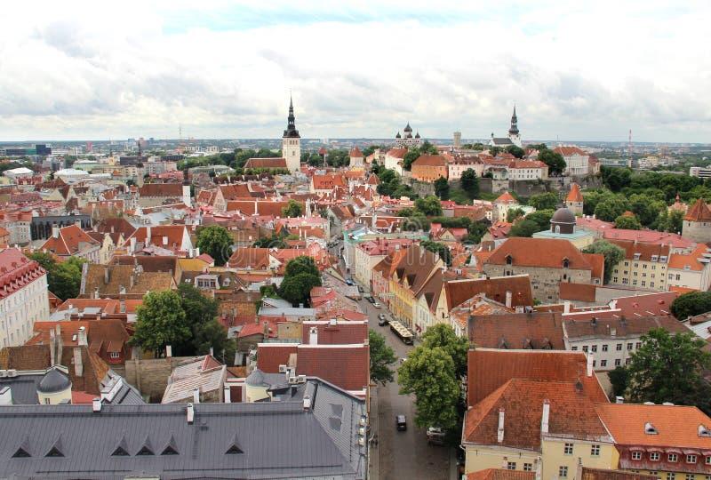 Härlig panorama av Tallin, Estland arkivbild