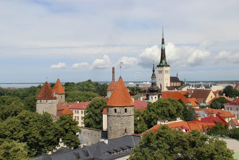 Härlig panorama av Tallin, Estland royaltyfri fotografi