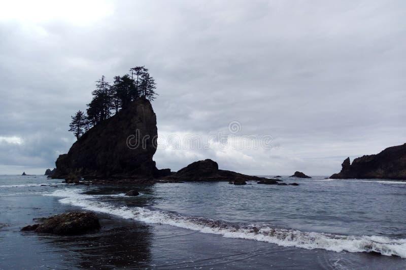 Härlig panoramautsikt av den sandiga stranden på Stilla havetkust royaltyfria foton
