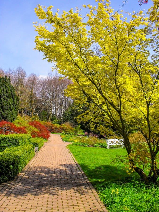 Härlig park royaltyfri bild