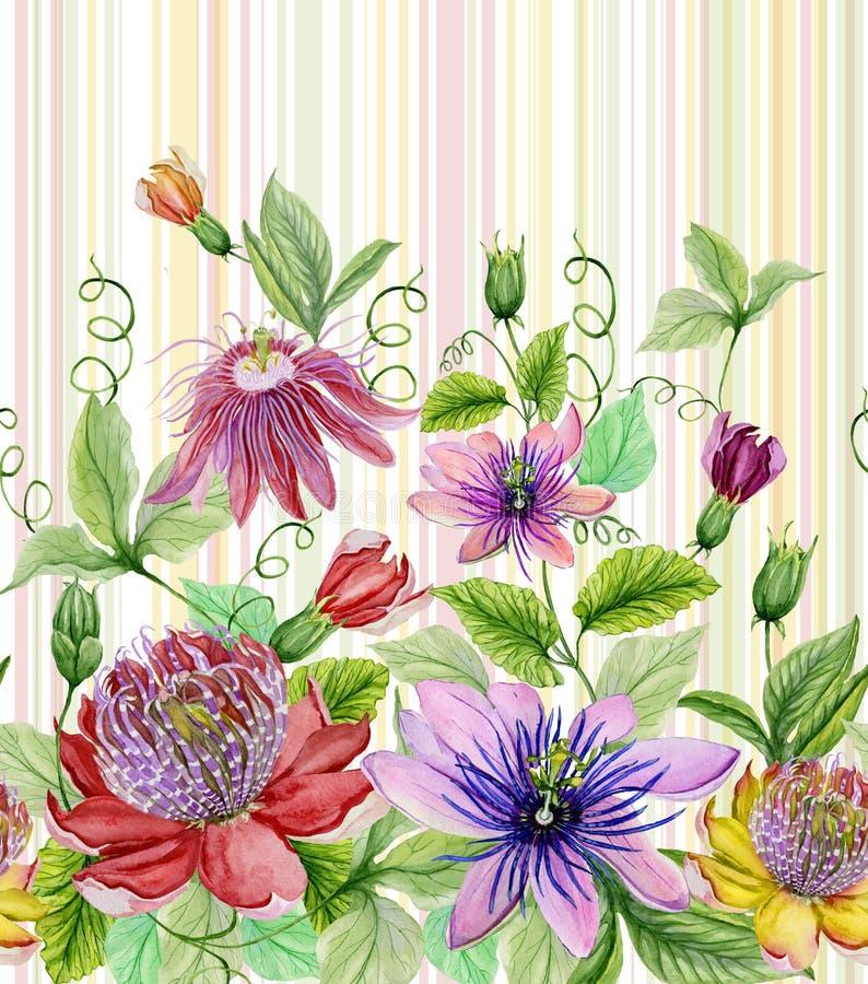 Härlig passion blommar passiflora med gröna sidor på pastell gjord randig bakgrund seamless blom- modell Vattenfärgpaintin stock illustrationer
