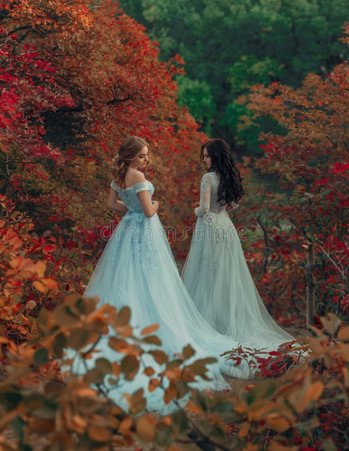 Härlig prinsessa två royaltyfri bild