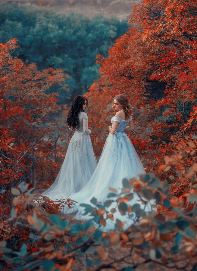Härlig prinsessa två arkivfoto
