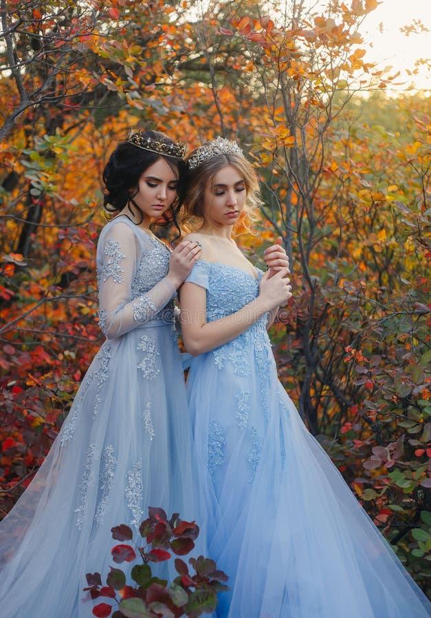 Härlig prinsessa två royaltyfria foton