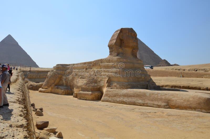 Härlig profil av den stora sfinxen royaltyfria foton