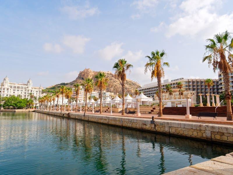 Härlig promenad i Alicante Sikt av palmträd och port spain fotografering för bildbyråer