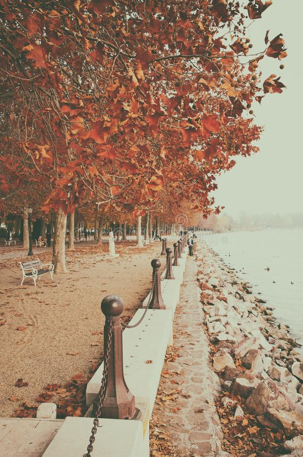 Härlig promenad på sjön Balaton i hösten, Ungern arkivfoto