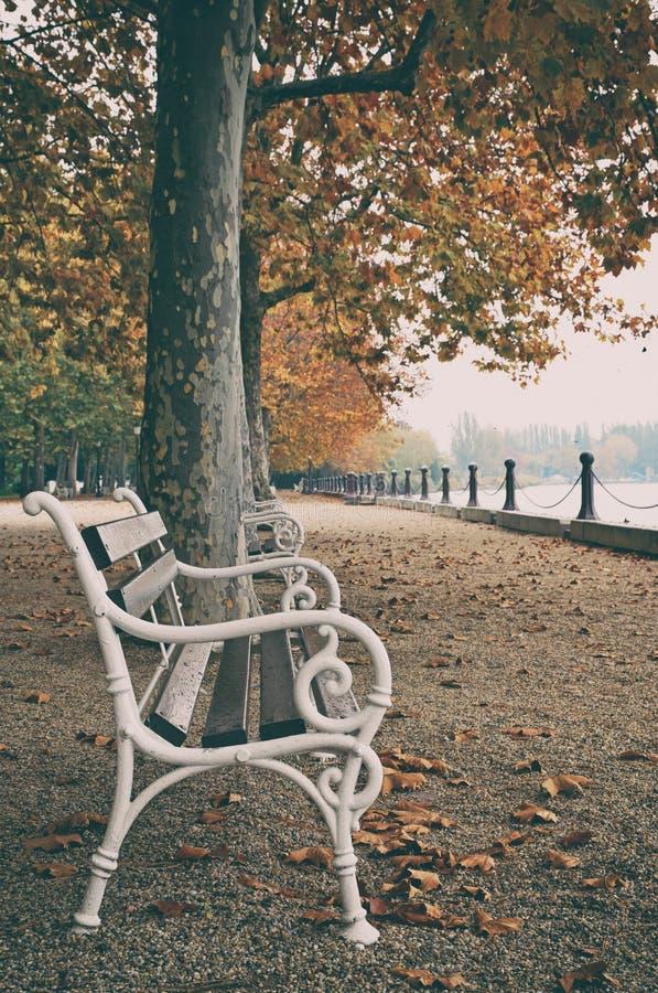 Härlig promenad på sjön Balaton i hösten, Ungern arkivbild