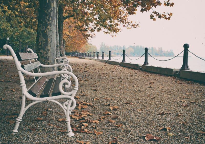 Härlig promenad på sjön Balaton i hösten, Ungern royaltyfria bilder