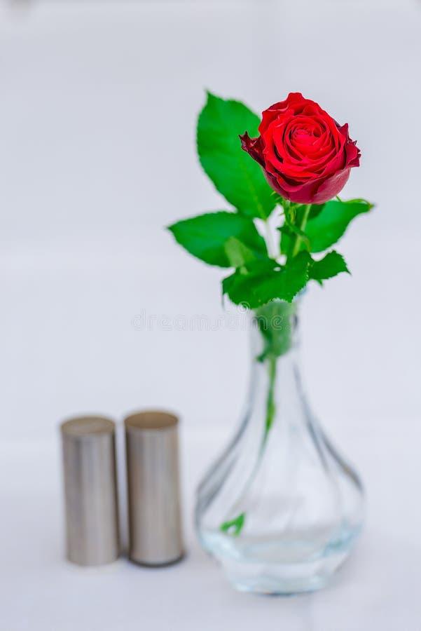 Härlig röd ros i en vas på en tabell i ett kafé arkivfoton