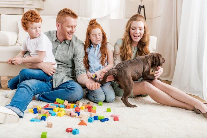 Härlig rödhårig manfamilj med valpen som hemma spelar med konstruktörn på golv royaltyfri fotografi