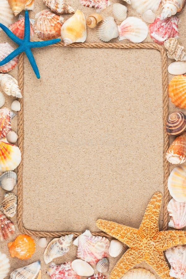 Härlig ram av repet och snäckskal på sanden royaltyfria foton