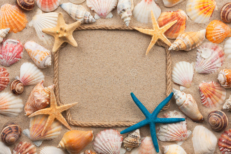 Härlig ram av repet och snäckskal, sjöstjärna på sanden arkivfoto