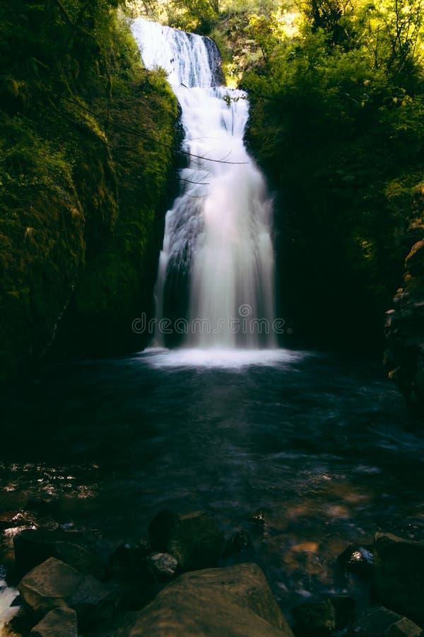 Härlig ren vattenfall i en exotisk tropisk skog med en sjö royaltyfria foton
