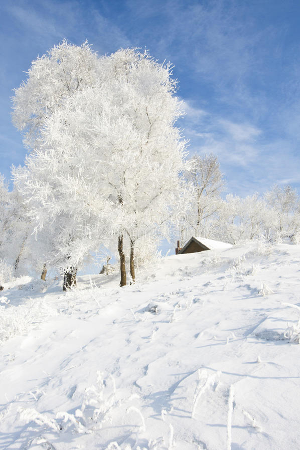 Härlig rime av norden av Kina royaltyfri foto